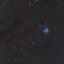 Pleiadi Iadi e Nebulosa California,                                Giorgio Ferrari