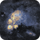 Cat's Paw NGC6334 in SHO - new camera ASI2600mm first image,                                robonrome