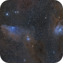 Blue Horsehead , Rho Oph and M4,                                Poochpa