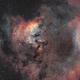 NGC7822 revisited,                                Nicolas Kizilian