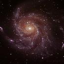M101 (Pinwheel Galaxy),                                Jorge Buzzi