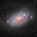 Sunflower Galaxy - Messier 63,                                Julien.Looten