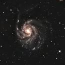 M101,                                Eric Horton
