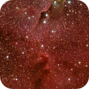 Crop of the Elephant Trunk, IC 1396A,                                John Hayes