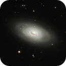 M64,                                Mike