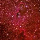IC 1396 The Elephant Trunk Nebula,                                SmackAstro