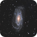 NGC 5033 in Canes Venatici,                                Jim Thommes