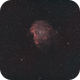 NGC 2174 Monkeyhead Nebula-Ha-HOO,                                Adel Kildeev