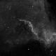 The Cygnus Wall,                                 degrbi