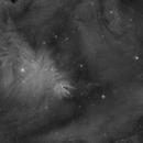 NGC 2264 - NGC 2261 - Nébuleuses du Cône et de Hubble,                                Nicolas Aguilar (Actarus09)