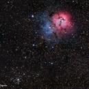 M20 - The Trifid Nebula,                                Patrick Cosgrove