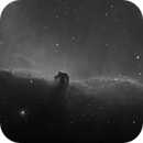 IC434 ,                                Ted D.
