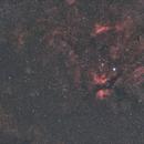 Gamma Cygni - Widefield (135 mm),                                Wolfgang Zimmermann