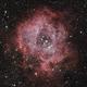 Rosette Nebula (Caldwell 49),                                Bertrand Lemasle