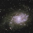 M33 the Triangulum Galaxy,                                Trevor