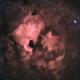 North American & Pelican Nebulae,                                Kevin Vella