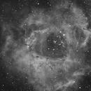 NGC 2237 - Nébuleuse de la Rosette,                                grizli21