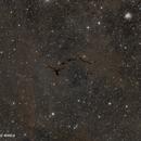 Barnard 150 - Seahorse Nebula,                                Murat SANA