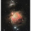 M42,                                Angelo F. Gambino