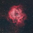 Rosette Nebula - NGC 2244,                                Jared Holloway
