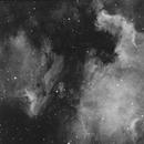 NGC6997,                                Florent Goy