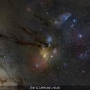 The Scorpion's Head - A Panorama of Stars and Nebulae,                                Gabriel R. Santos (grsotnas)