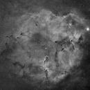 Elephant's Trunk Nebula, IC1396, Mosaic in Ha,                                legova