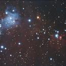NGC 2264,                                Juan González Alicea