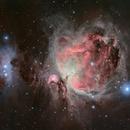 Nébuleuse d'Orion,                                Vincent Caron