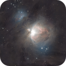 Experimental M42,                                Tristan Campbell