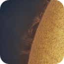 The Sun - A Monster Prominence,                                Jason Guenzel