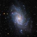 Messier 33 - The Triangulum Galaxy,                                Randy Roy