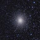 Ω Centauri,                                Olga Witzler Ismael
