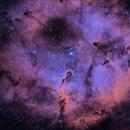 IC1396 - The Elephant's Trunk nebula [HOO],                                Rich Sky