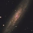 NGC 253,                                IzaakC