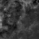 NGC 6888 Area, Ha,                                Stephen Garretson