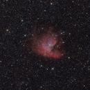 NGC281 Pacman,                                Mario Gromke