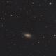 NGC 2903  (29 Dec 2019),                                Bernhard Suntinger