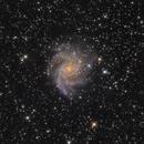 NGC 6946,                                Michael Blaylock