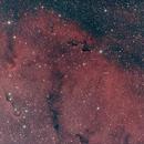 Elephant Trunk Nebula,                                Robin Clark - EAA imager