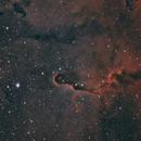 IC1396 (vdB 142)- Elephant Trunk Nebula HOO,                                Mike Hislope