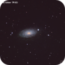 The Sunflower Galaxy (M63) ,                                serenovariabile