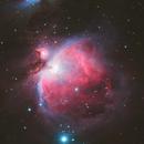 M42 Orion Nebula,                                Frank Chen