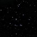"M44 @ 2014-02-14 firstlight vom 10"" Newton,                                Horst Twele"