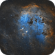 IC 410 - Tadpoles - SHO,                                Phil Brewer