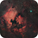 North America and Pelican Nebulas,                                Scott Tucker