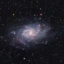 M33 Triangulum Galaxy,                                Jan Veleba
