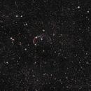 Crescent Nebula,                                SeanArgenti