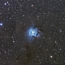 Iris Nebula,                                David Gwyn