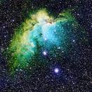 Wizard Nebula,                                Mark Striebeck